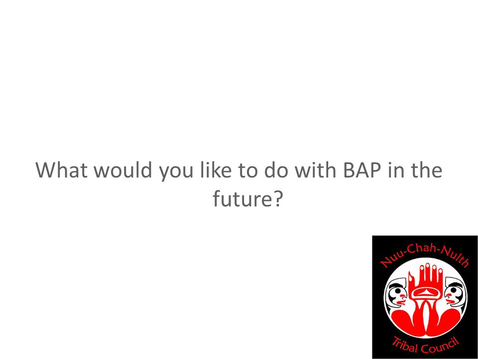 What would you like to do with BAP in the future?