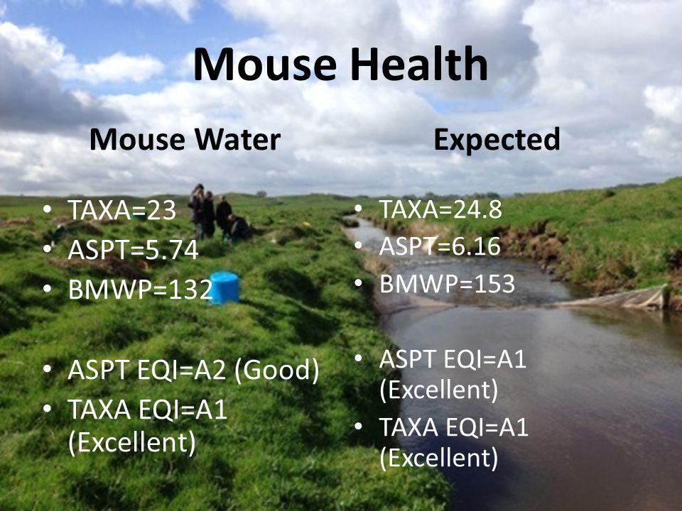 Mouse Health Mouse Water TAXA=23 ASPT=5.74 BMWP=132 ASPT EQI=A2 (Good) TAXA EQI=A1 (Excellent) Expected TAXA=24.8 ASPT=6.16 BMWP=153 ASPT EQI=A1 (Excellent) TAXA EQI=A1 (Excellent)