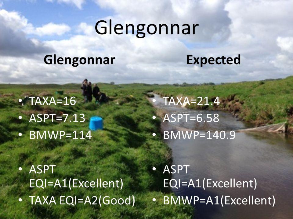 Glengonnar TAXA=16 ASPT=7.13 BMWP=114 ASPT EQI=A1(Excellent) TAXA EQI=A2(Good) Expected TAXA=21.4 ASPT=6.58 BMWP=140.9 ASPT EQI=A1(Excellent) BMWP=A1(Excellent)