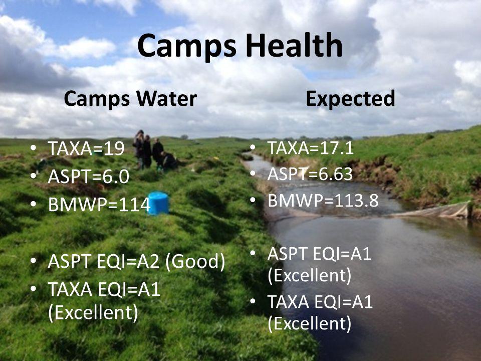 Camps Health Camps Water TAXA=19 ASPT=6.0 BMWP=114 ASPT EQI=A2 (Good) TAXA EQI=A1 (Excellent) Expected TAXA=17.1 ASPT=6.63 BMWP=113.8 ASPT EQI=A1 (Excellent) TAXA EQI=A1 (Excellent)