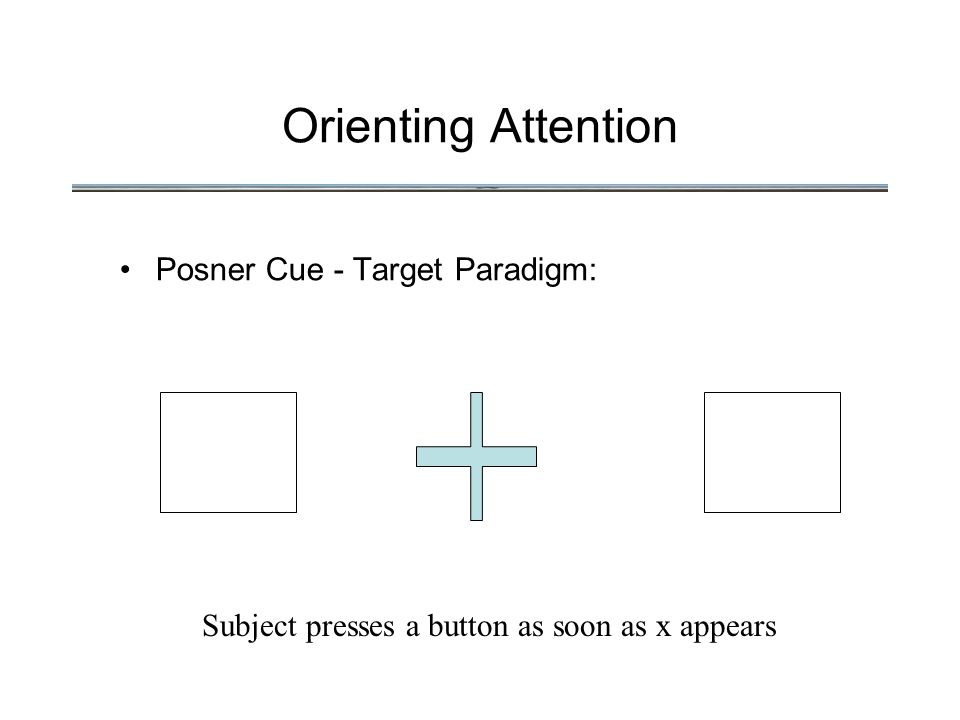 Orienting Attention Posner Cue - Target Paradigm: Subject presses a button as soon as x appears