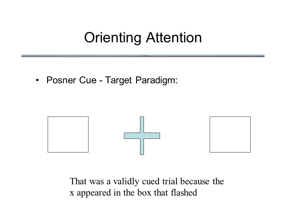 Orienting Attention Posner Cue - Target Paradigm: That was a validly cued trial because the x appeared in the box that flashed