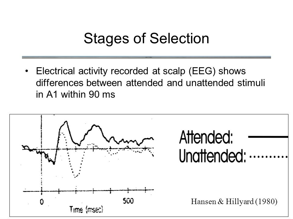 Stages of Selection Electrical activity recorded at scalp (EEG) shows differences between attended and unattended stimuli in A1 within 90 ms Hansen & Hillyard (1980)