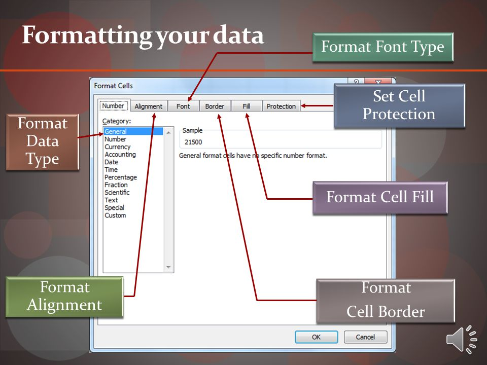 Format Data Type Format Alignment Format Font Type Set Cell Protection Format Cell Fill Format Cell Border Formatting your data