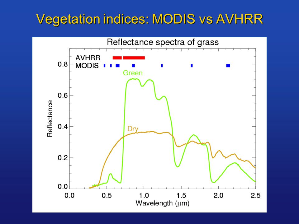 Vegetation indices: MODIS vs AVHRR
