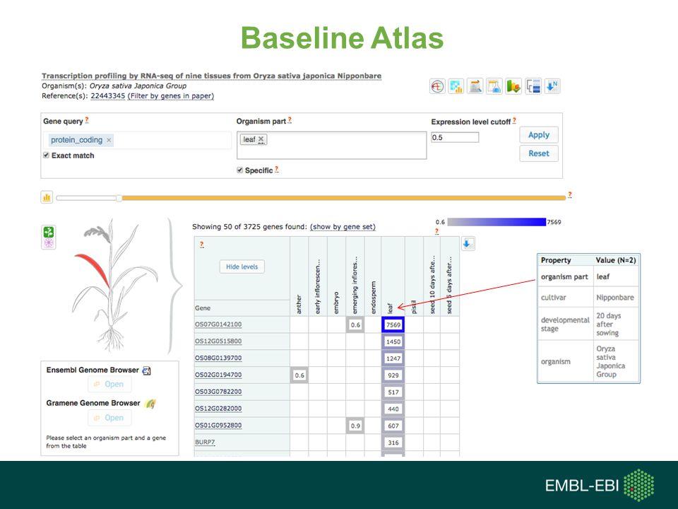 Baseline Atlas