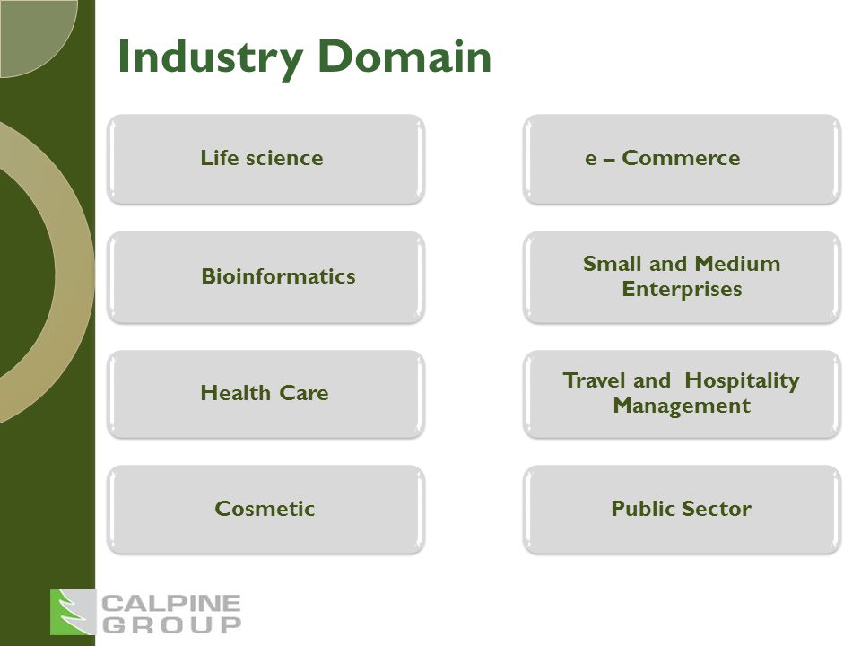Life science Bioinformatics Health Care Cosmetic e – Commerce Small and Medium Enterprises Travel and Hospitality Management Public Sector Industry Domain
