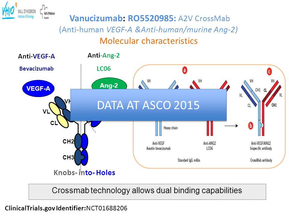 Vanucizumab: RO5520985: A2V CrossMab (Anti-human VEGF-A &Anti-human/murine Ang-2) Molecular characteristics VEGF-A Anti-VEGF-A Bevacizumab Anti-Ang-2