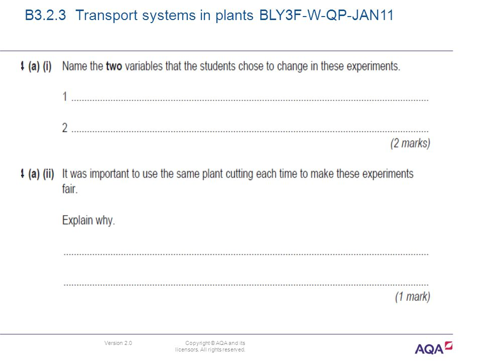 Version 2.0 Copyright © AQA and its licensors. All rights reserved. B3.2.3 Transport systems in plants BLY3F-W-QP-JAN11