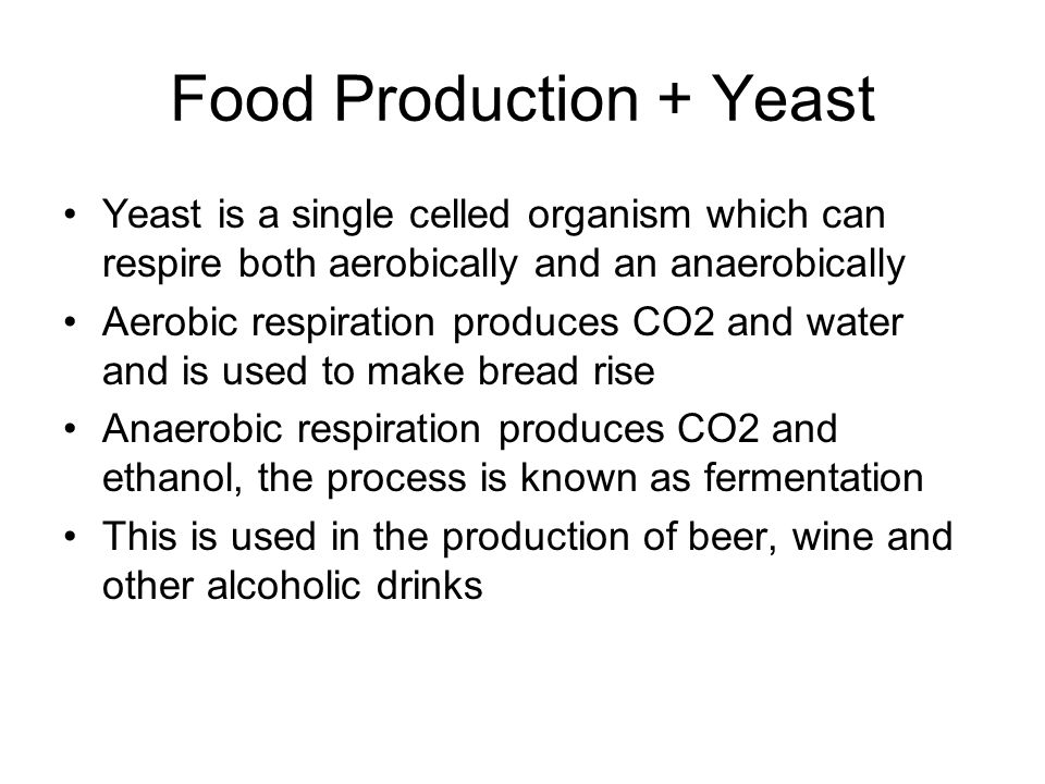 Food Production + Yeast Yeast is a single celled organism which can respire both aerobically and an anaerobically Aerobic respiration produces CO2 and water and is used to make bread rise Anaerobic respiration produces CO2 and ethanol, the process is known as fermentation This is used in the production of beer, wine and other alcoholic drinks