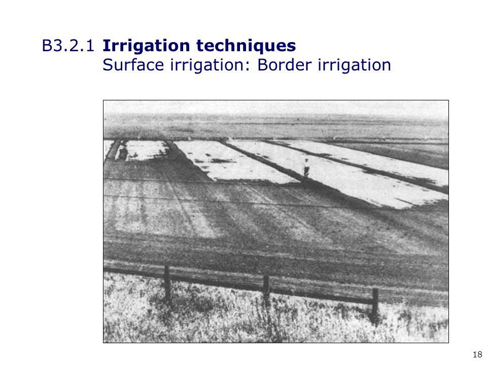 18 B3.2.1Irrigation techniques Surface irrigation: Border irrigation