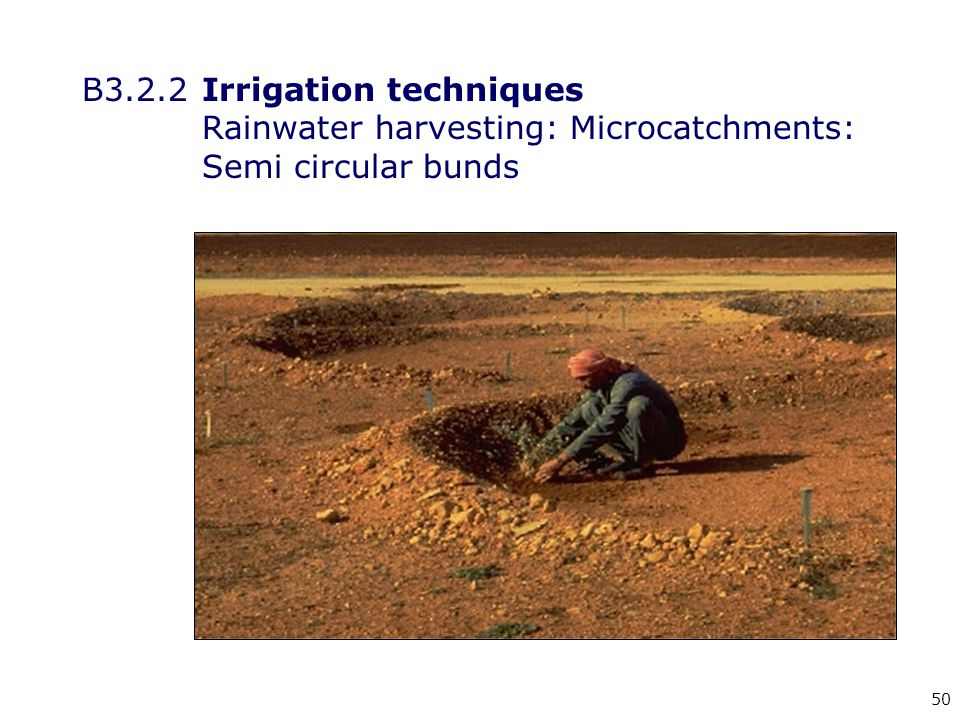 50 B3.2.2Irrigation techniques Rainwater harvesting: Microcatchments: Semi circular bunds