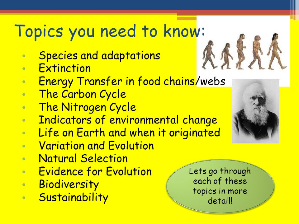 Topics you need to know: Species and adaptations Extinction Energy Transfer in food chains/webs The Carbon Cycle The Nitrogen Cycle Indicators of envi