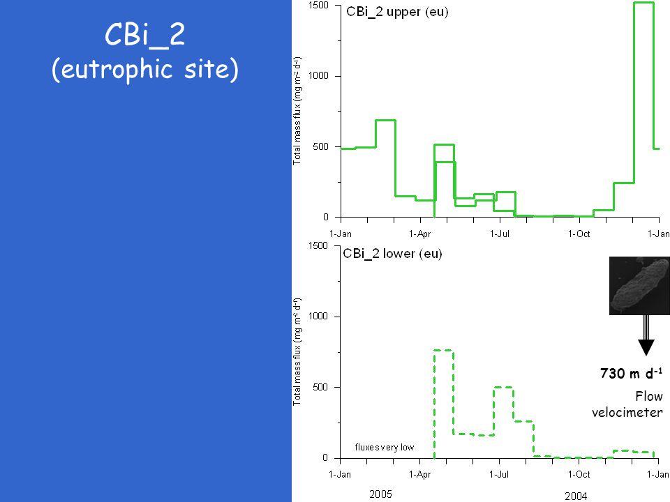 CBi_2 (eutrophic site) 730 m d -1 Flow velocimeter