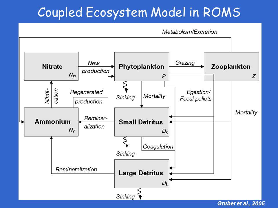 Gruber et al., 2005 Coupled Ecosystem Model in ROMS