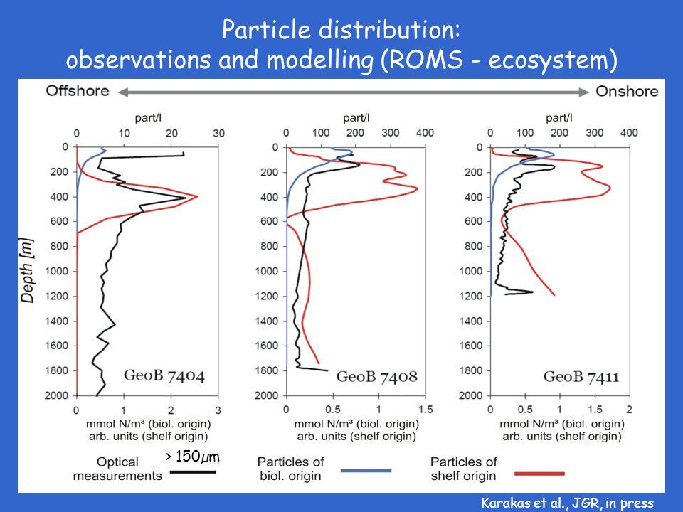 Particle distribution: observations and modelling (ROMS - ecosystem) > 150µm Karakas et al., JGR, in press