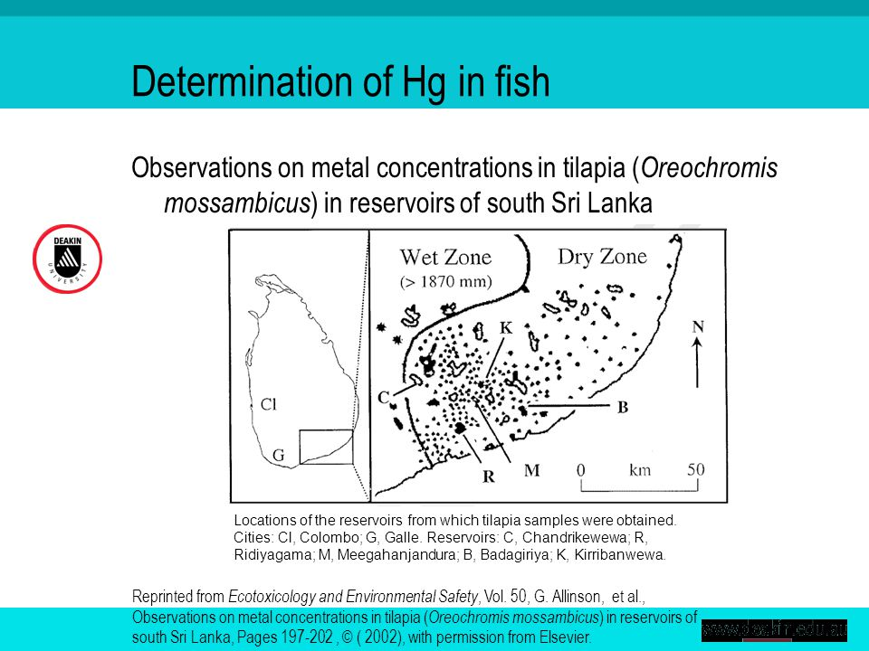 Observations on metal concentrations in tilapia ( Oreochromis mossambicus ) in reservoirs of south Sri Lanka Reprinted from Ecotoxicology and Environmental Safety, Vol.