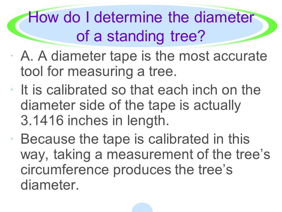 DIAMETER CLASSES