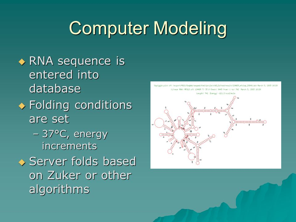 Computer Modeling  RNA sequence is entered into database  Folding conditions are set –37°C, energy increments  Server folds based on Zuker or other algorithms
