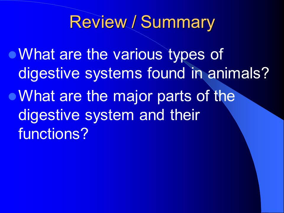 Review / Summary What are the various types of digestive systems found in animals? What are the major parts of the digestive system and their function