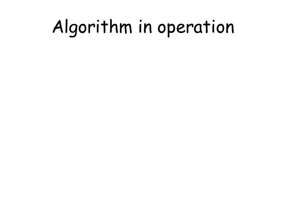 Algorithm in operation