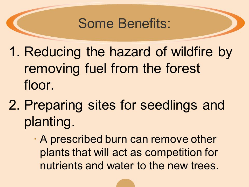 The Purpose of Prescribed Fire ·A prescribed fire is a managed, intentional fire set by humans for a specific purpose.