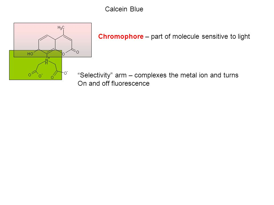 Chromophore – part of molecule sensitive to light Selectivity arm – complexes the metal ion and turns On and off fluorescence Calcein Blue