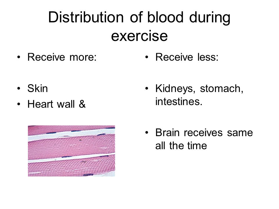 Distribution of blood during exercise Receive more: Skin Heart wall & Receive less: Kidneys, stomach, intestines. Brain receives same all the time