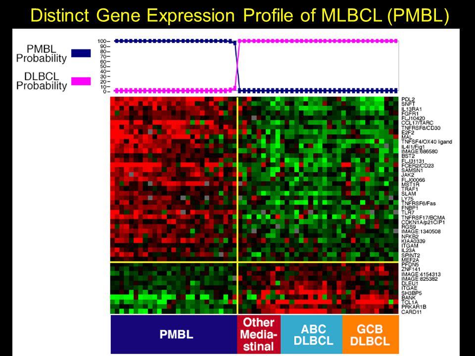 Distinct Gene Expression Profile of MLBCL (PMBL)