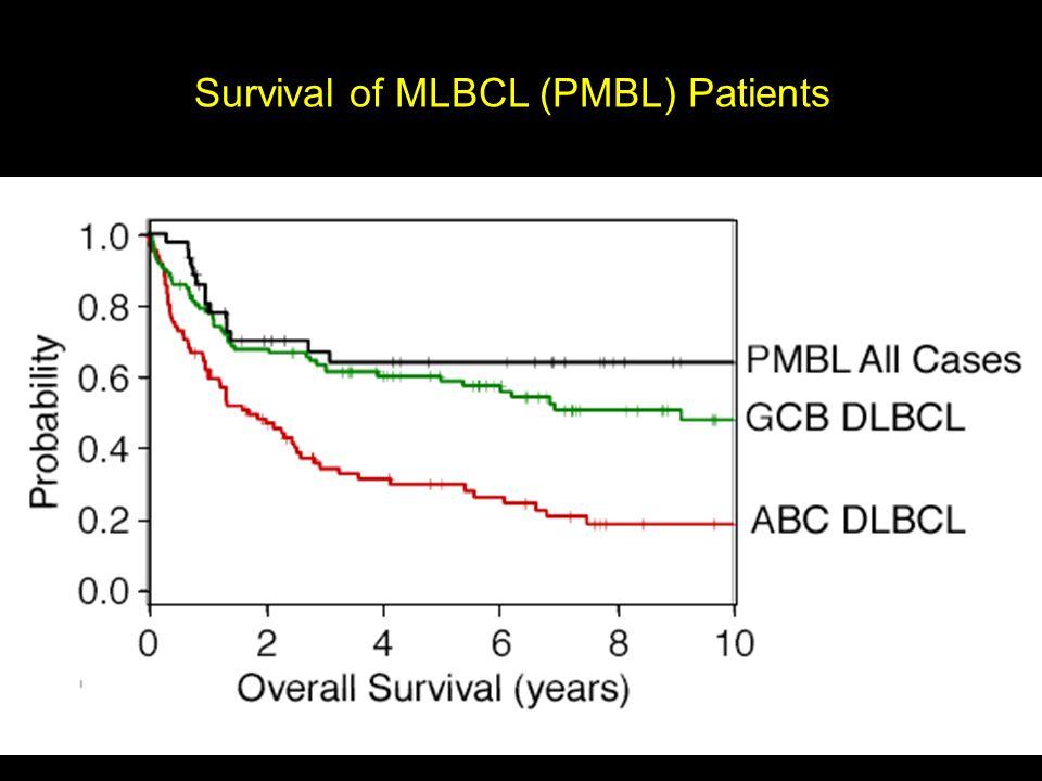 Survival of MLBCL (PMBL) Patients
