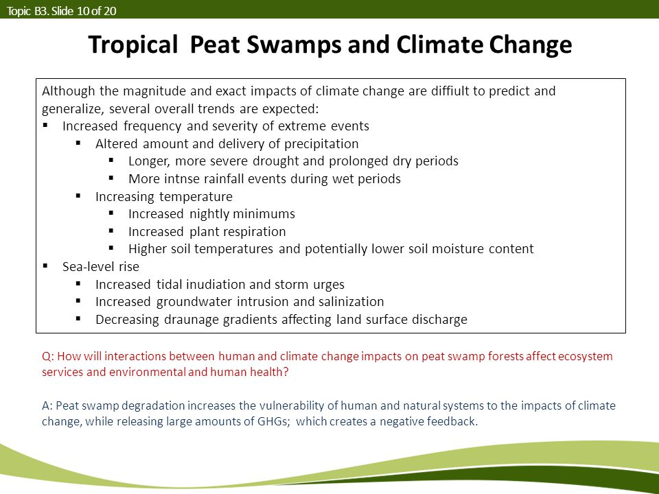 Tropical Peat Swamps and Climate Change Topic B3.