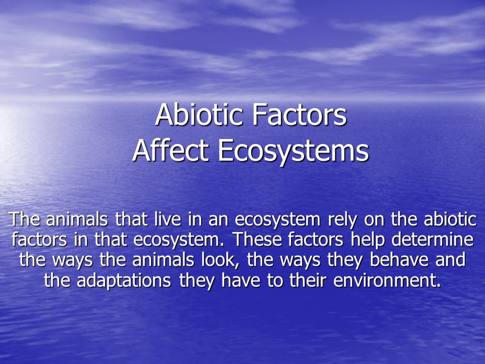 Abiotic Factors Affect Ecosystems The animals that live in an ecosystem rely on the abiotic factors in that ecosystem. These factors help determine th