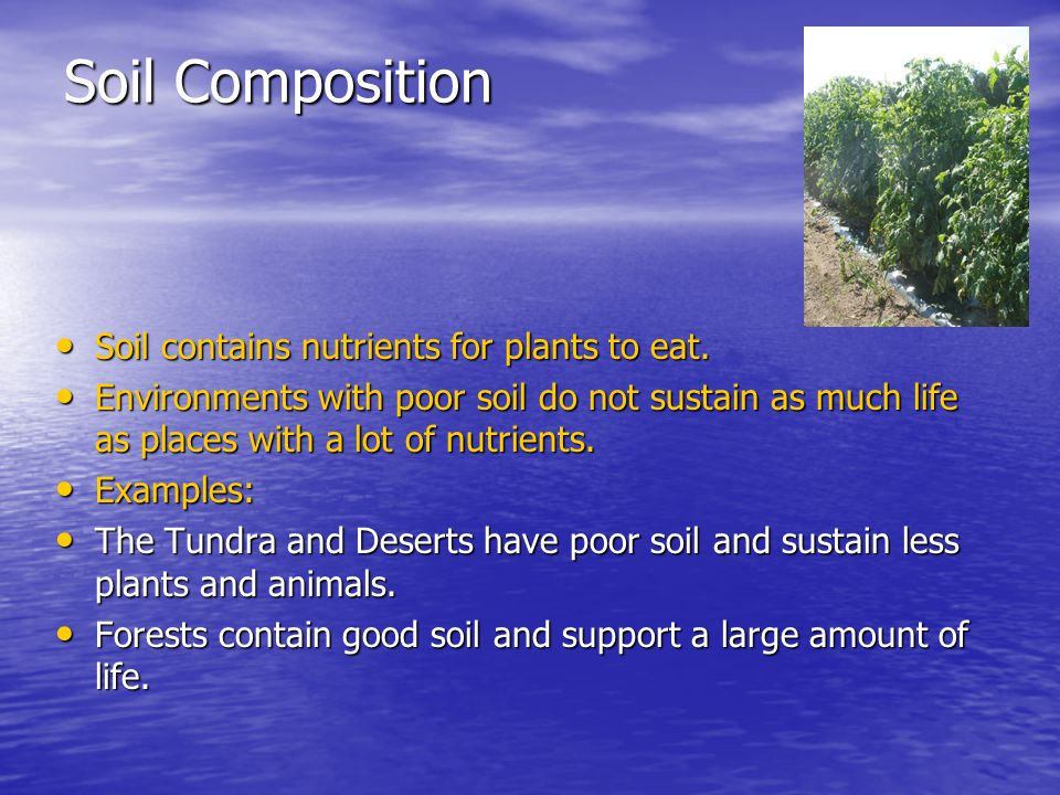 Soil Composition Soil contains nutrients for plants to eat. Soil contains nutrients for plants to eat. Environments with poor soil do not sustain as m
