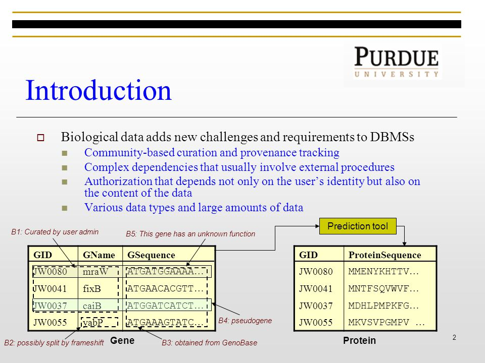 2 Introduction  Biological data adds new challenges and requirements to DBMSs Community-based curation and provenance tracking Complex dependencies that usually involve external procedures Authorization that depends not only on the user's identity but also on the content of the data Various data types and large amounts of data GIDGNameGSequence JW0080mraW ATGATGGAAAA … JW0041fixB ATGAACACGTT … JW0037caiB ATGGATCATCT … JW0055yabP ATGAAAGTATC … Gene B3: obtained from GenoBase B1: Curated by user admin B2: possibly split by frameshift B5: This gene has an unknown function B4: pseudogene GIDProteinSequence JW0080 MMENYKHTTV … JW0041 MNTFSQVWVF … JW0037 MDHLPMPKFG … JW0055 MKVSVPGMPV … Protein Prediction tool