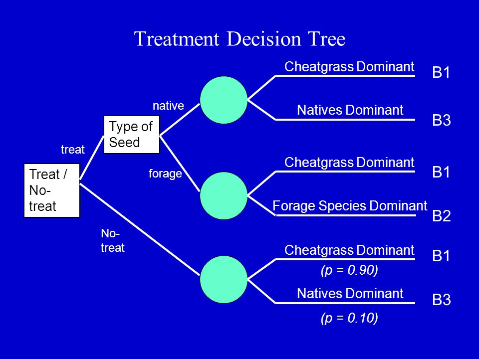Treatment Decision Tree Type of Seed B1 B3 Treat / No- treat Cheatgrass Dominant Natives Dominant Forage Species Dominant Cheatgrass Dominant Natives Dominant B1 B2 B1 B3 native forage No- treat treat (p = 0.90) (p = 0.10)