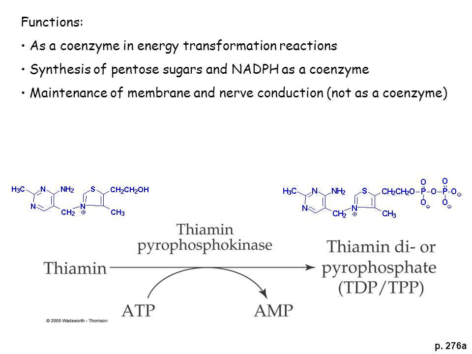 p. 276a Functions: As a coenzyme in energy transformation reactions Synthesis of pentose sugars and NADPH as a coenzyme Maintenance of membrane and ne