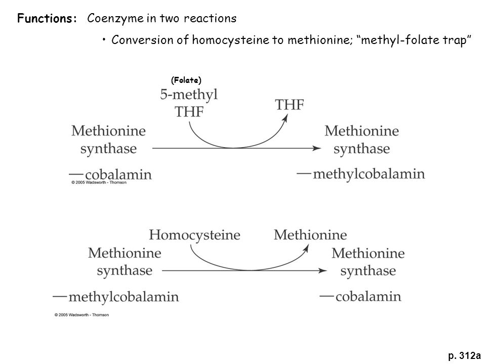 """p. 312a Functions: Coenzyme in two reactions Conversion of homocysteine to methionine; """"methyl-folate trap"""" (Folate)"""