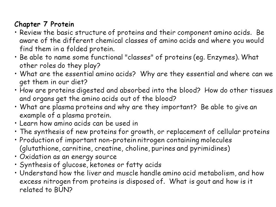 Chapter 7 Protein Review the basic structure of proteins and their component amino acids.