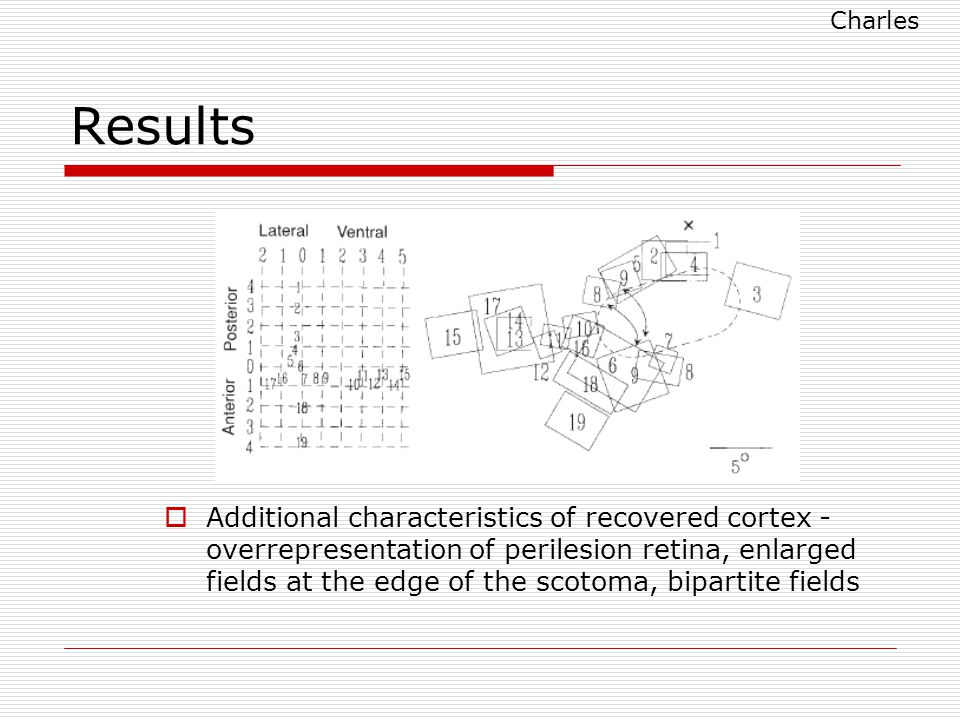 Results  Additional characteristics of recovered cortex - overrepresentation of perilesion retina, enlarged fields at the edge of the scotoma, bipartite fields Charles