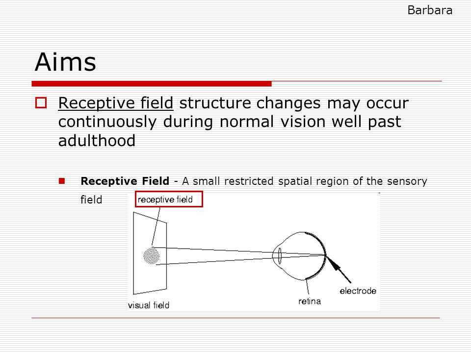 Aims  Receptive field structure changes may occur continuously during normal vision well past adulthood Receptive Field - A small restricted spatial region of the sensory field Barbara