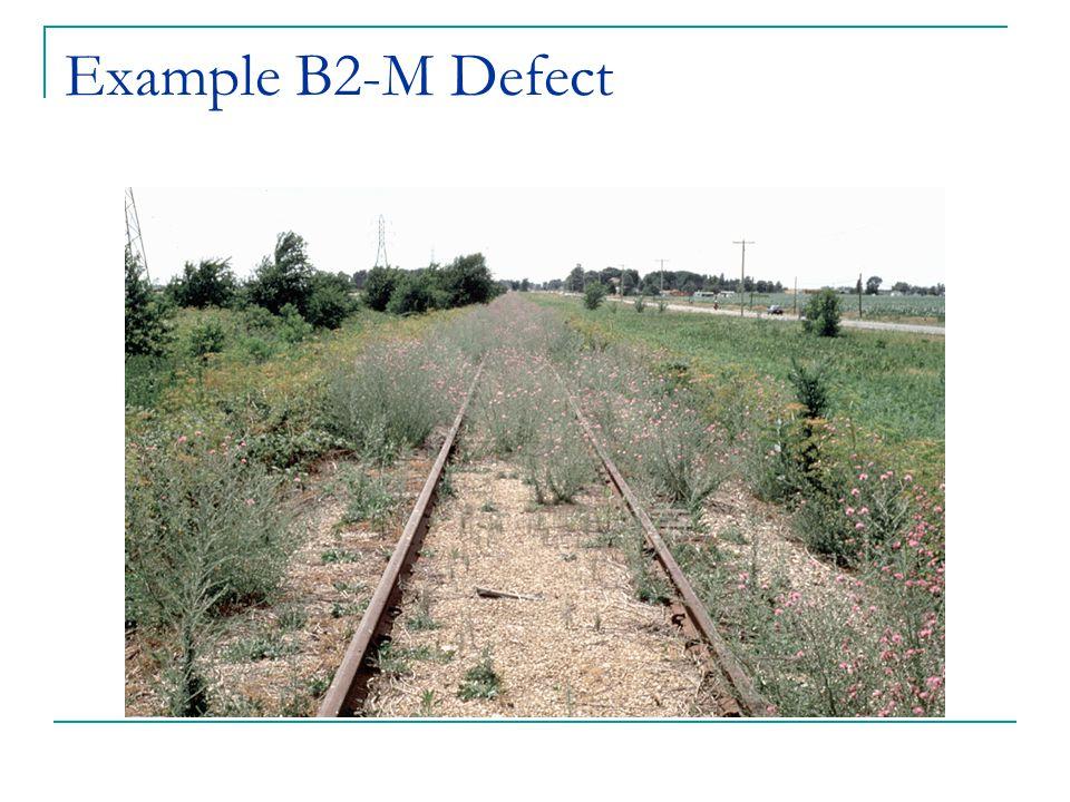 Example B2-M Defect