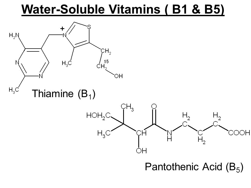 Water-Soluble Vitamins ( B1 & B5) Thiamine (B 1 ) Pantothenic Acid (B 5 )