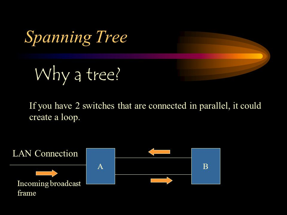 Spanning Tree Why a tree? If you have 2 switches that are connected in parallel, it could create a loop. AB LAN Connection Incoming broadcast frame