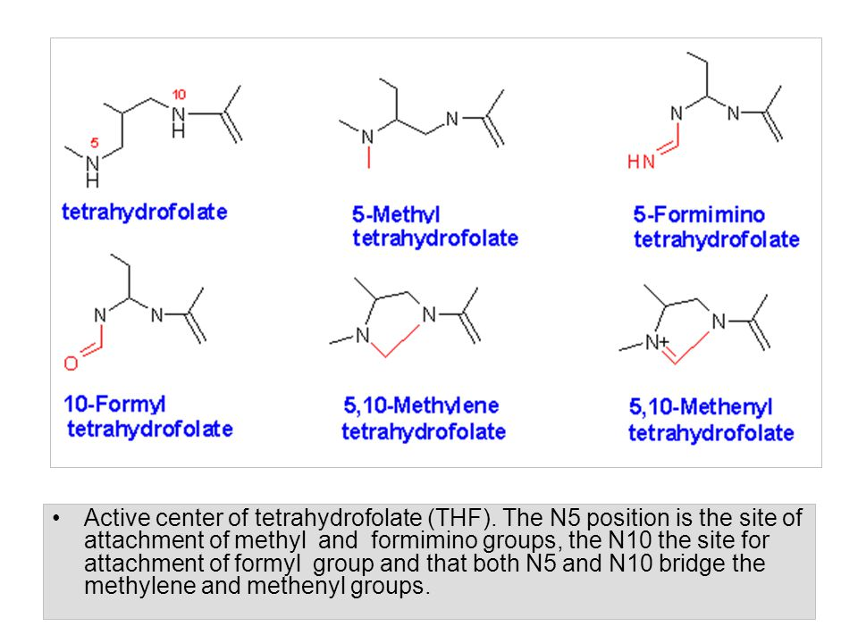 Active center of tetrahydrofolate (THF). The N5 position is the site of attachment of methyl and formimino groups, the N10 the site for attachment of