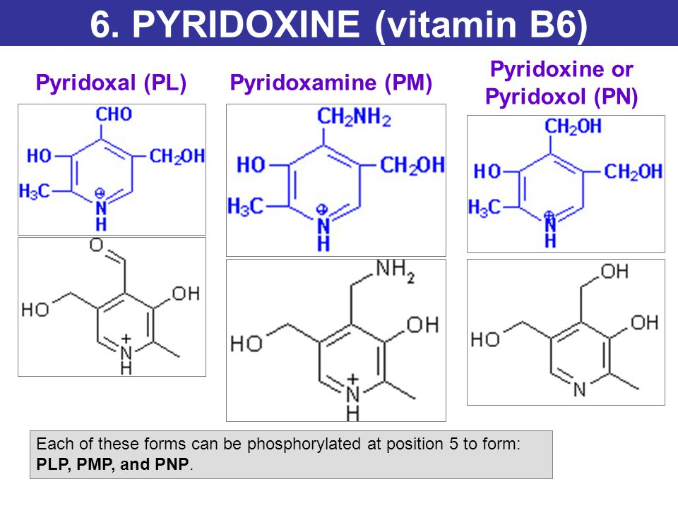 Active form Pyridoxal phosphate (PLP) PLP and PL account for 90% of the total B6 in the blood.