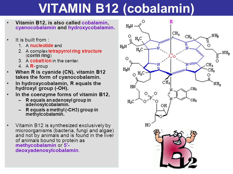 VITAMIN B12 (cobalamin) Vitamin B12, is also called cobalamin, cyanocobalamin and hydroxycobalamin. It is built from : 1.A nucleotide and 2.A complex