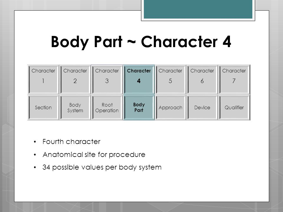 Body Part ~ Character 4 Character 1 Character 2 Character 3 Character 4 Character 5 Character 6 Character 7 Section Body System Root Operation Body Pa