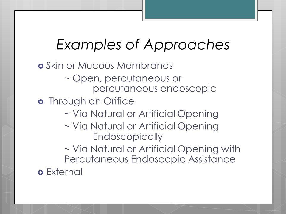 Examples of Approaches  Skin or Mucous Membranes ~ Open, percutaneous or percutaneous endoscopic  Through an Orifice ~ Via Natural or Artificial Ope