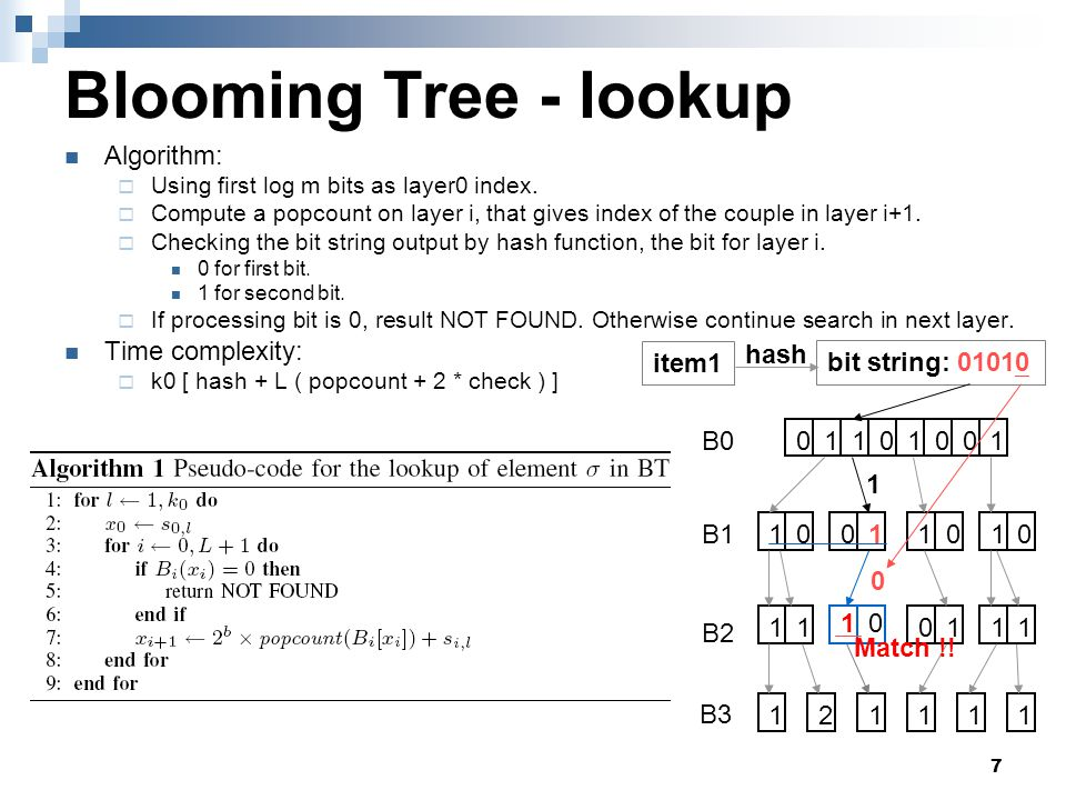 18 Optimized Blooming Tree - insert Without collision  Add a zero-block  Set bit string and hash substring B0 B1 B2 B3 11110000 1211 1 00 10 00 0 1111 01 10 0011 bitmap Hash substrings item1bit string : 01101 hash 1 0 0 01 10 Hash substrings 0 1 1 1 bitmap 0 01
