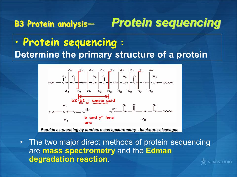 B3 Protein analysis— Protein sequencing Protein sequencing : Determine the primary structure of a protein The two major direct methods of protein sequencing are mass spectrometry and the Edman degradation reaction.